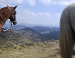 Paardrijtochten vanuit Saint-Paulien