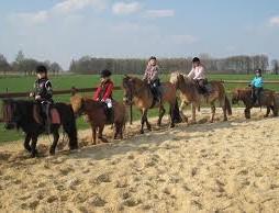 Ponyclub Julianges