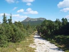 De Mont Mézenc